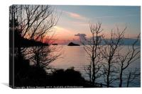 Sunrise at Meadfoot Beach in Torquay through the t, Canvas Print