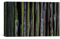 wood fence, Canvas Print