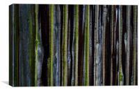 wood fence, Canvas Print