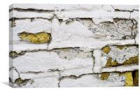 Old brick wall, Canvas Print