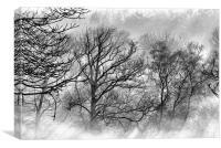Winter Wood, Canvas Print