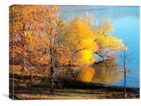 Trees at the Lake, Canvas Print