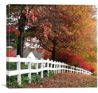 White Fence, Canvas Print