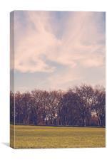 Soft Spring Park Views, Canvas Print