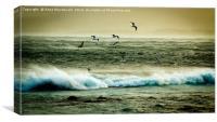 Gulls Versus Storm Gertrude, Canvas Print
