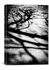 Shadows across the lane, Canvas Print