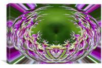 Allium Sphere, Canvas Print