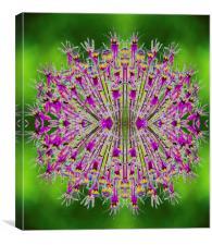 Solarallium, Canvas Print