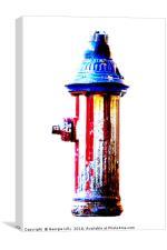NYC Hydrant, Canvas Print