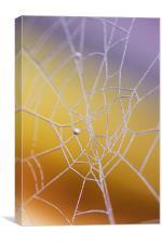 Frozen web, Canvas Print