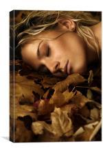 autumn 03, Canvas Print