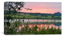 Summer Meadow Sunset, Canvas Print