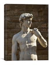 Michelangelos David - Florence, Canvas Print