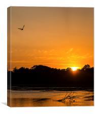 """Golden Bay"" Sunset, Canvas Print"
