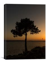 Evening Hill, Sandbanks Sunset, Canvas Print