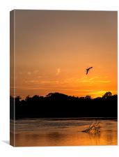 Holes Bay Sunset, Canvas Print