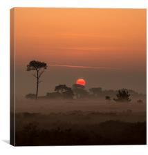 Sunrise on the Heath, Canvas Print