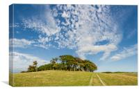 Big Sky over Chanctonbury Ring, Canvas Print