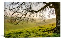 Hazy and misty Steyning Bowl, Canvas Print