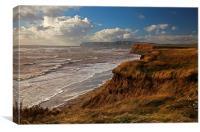 Windy shores, Canvas Print