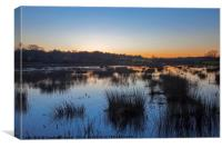 Peace on the marshes, Canvas Print