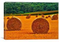 Autumn Hay Bales , Canvas Print