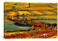Evening Light at Hedleyhope Fell County Durham, Canvas Print