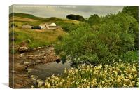 Teesdale Countryside, Canvas Print