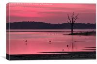 Rutland Water Before Sunrise, Canvas Print