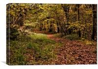 A Walk Through the Leaves, Canvas Print