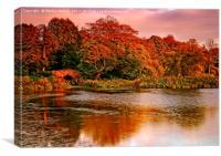 Autumn Sunset at Hardwick Park, Canvas Print