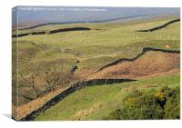 Stone Walls Snaking Over the Yorkshire Moors, Canvas Print