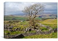 Yorkshire Dales Landscape - Malhamdale, Canvas Print
