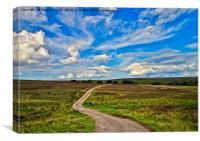 Road Across the Moors, Canvas Print
