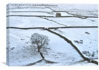 Weardale Winter Landscape, Canvas Print
