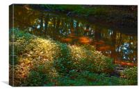Stream Reflection with Dappled Sunlight, Canvas Print