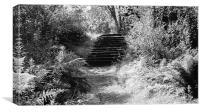 secret path, Canvas Print