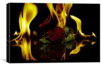 Start Of Burning Love, Canvas Print