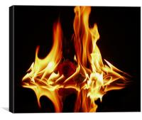 The Burning Fire Of Love, Canvas Print