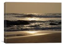 Sri Lankan Beach, Canvas Print