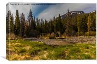 Yellowstone Landscape, Canvas Print