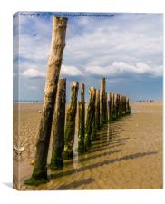 Mid Beach Breakwater at West Wittering, Canvas Print