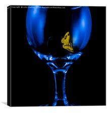Moth on a Wine Glass, Canvas Print