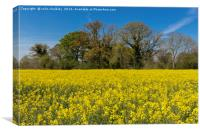 Oxfordshire Countryside, Canvas Print