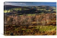 View from Stanage Edge, Canvas Print