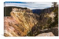 Yellowstone National Park - Lower Falls, Canvas Print