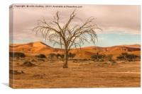 Sossusvlie Tree at Dawn, Namibia, Canvas Print