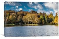 Late November afternoon at Stourhead Gardens, Canvas Print