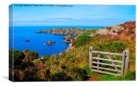 The Wales Coast Path above Pwllderi, Canvas Print