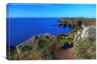 The Wales Coast Path above St Non's Bay, Canvas Print